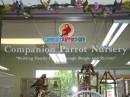 Companion Parrot Nursery